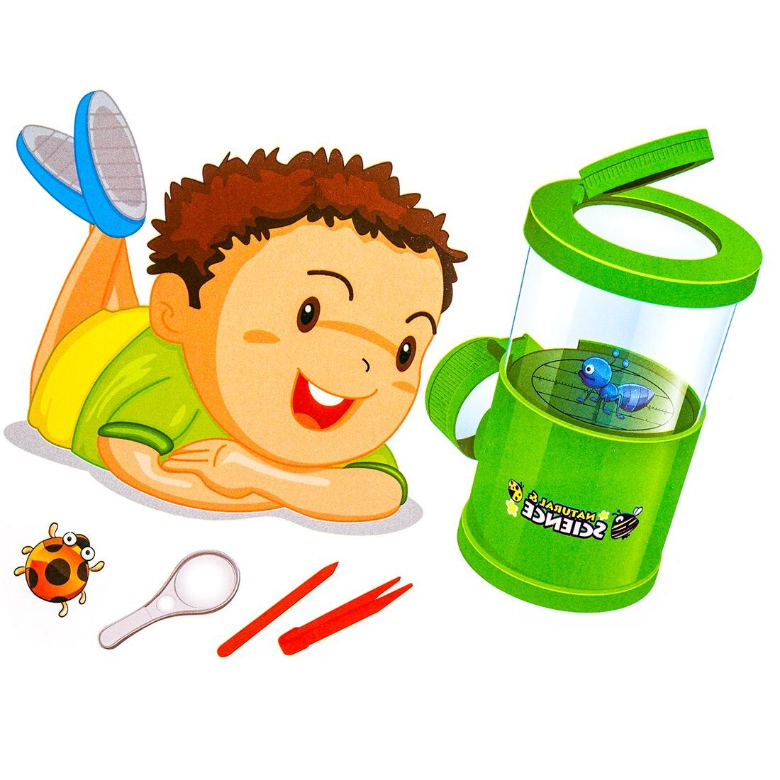 Bug Insect Biology Learning Development Education Children c