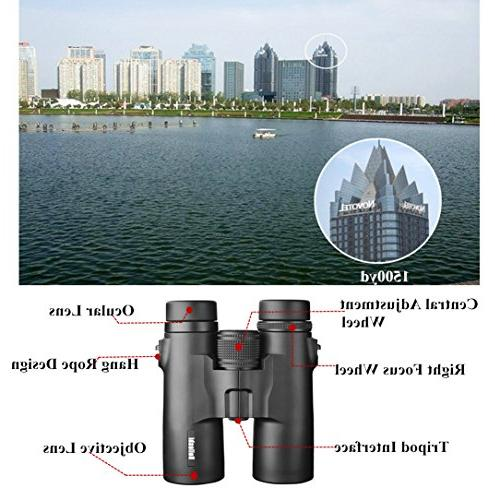 Beileshi 10x42 Prism Binoculars HD Binocular for Recreation Birding Prism Lens-with Bag